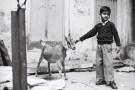 Tri X / 24x36 / The goat and the child - Varanasi