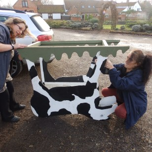 Dismantling Connie the Cow