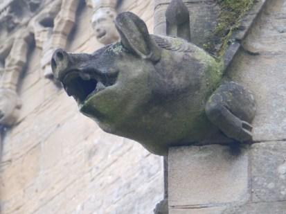 Pig Gargoyle - Southwell Minster