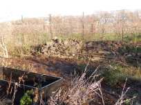 Newly cleared area with raised bed and wildlife area