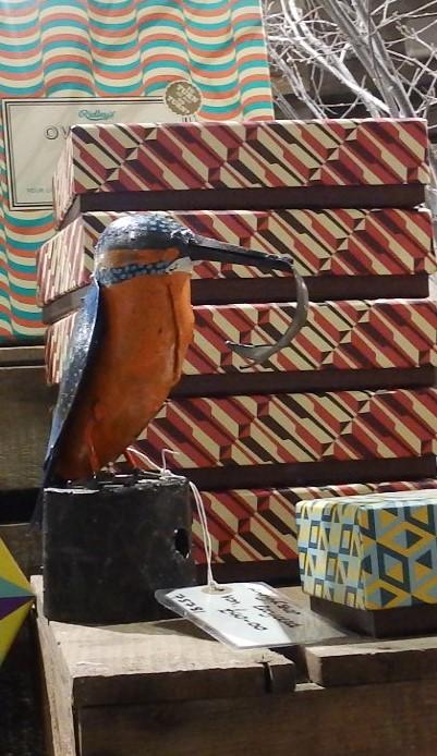 Tin Kingfisher