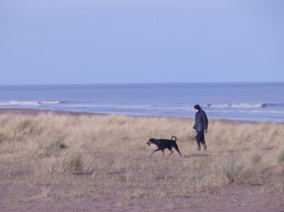 Dogs at Sutton on Sea