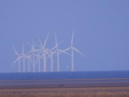 Wind Turbines - Horseshoe Point