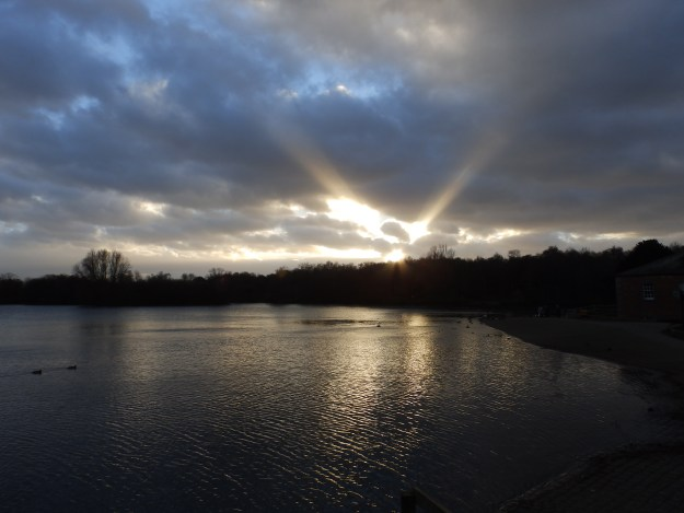 Crepuscular rays at Rufford Park