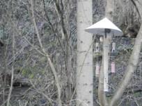 Bird feeders Via Gallia, Cromford