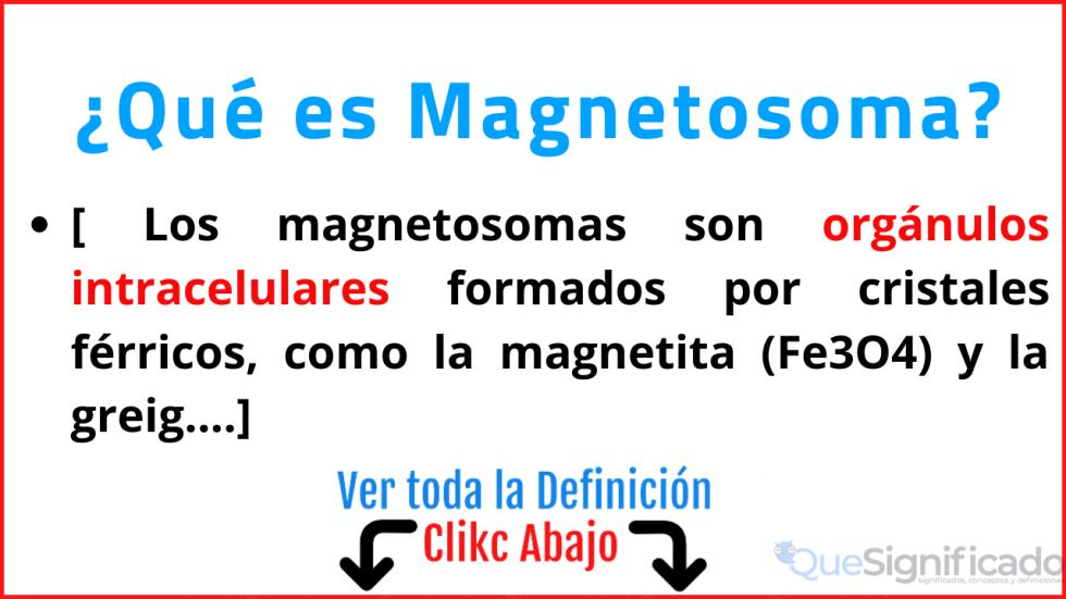 que es magnetosoma significado concepto definición