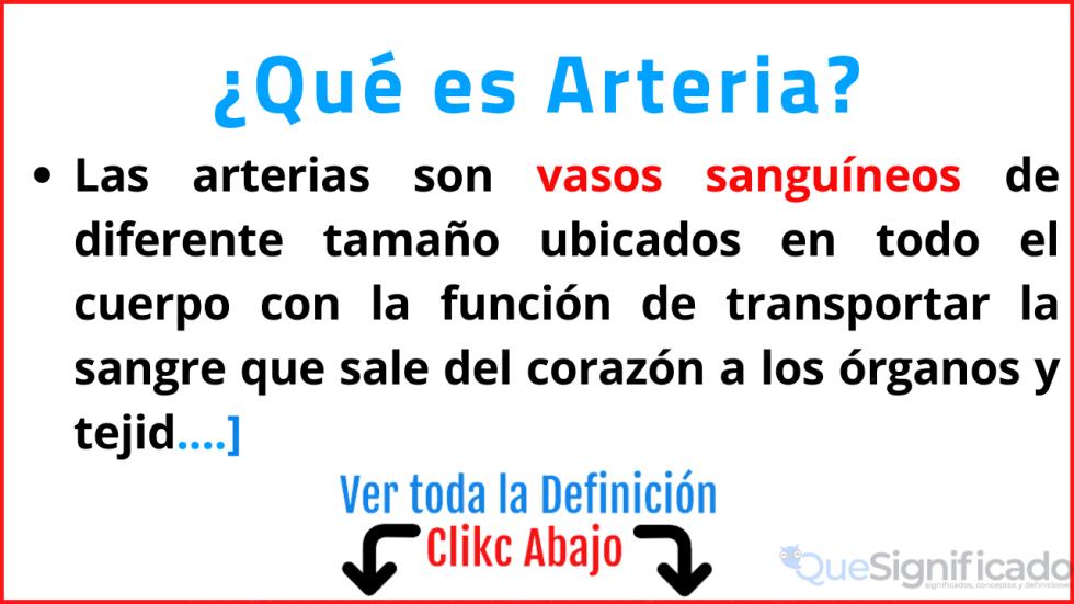 que es arteria significado concepto definicion funcion importancia