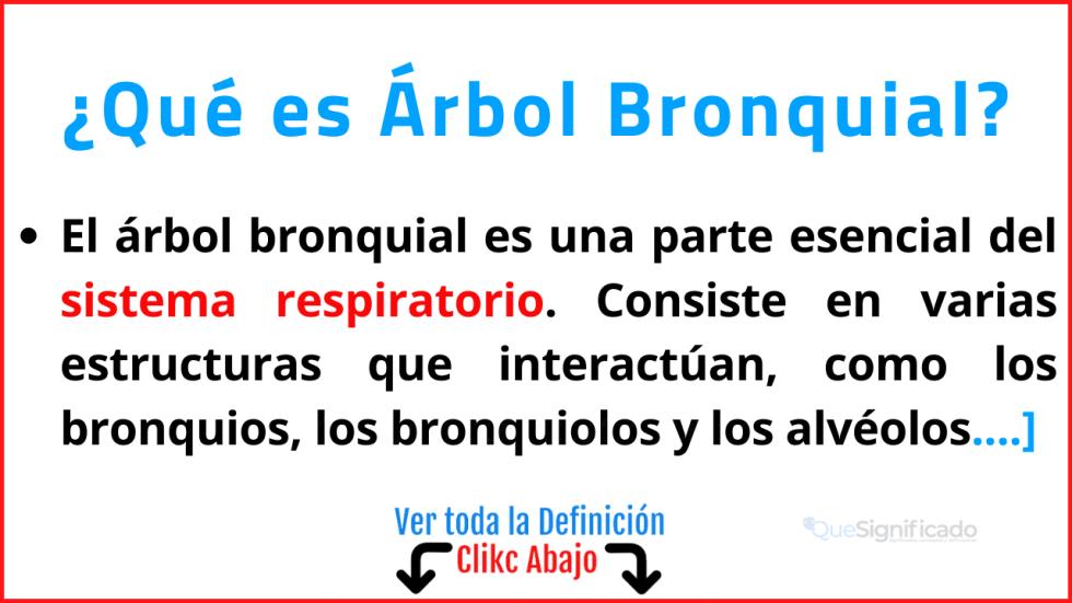 Qué es Árbol Bronquial