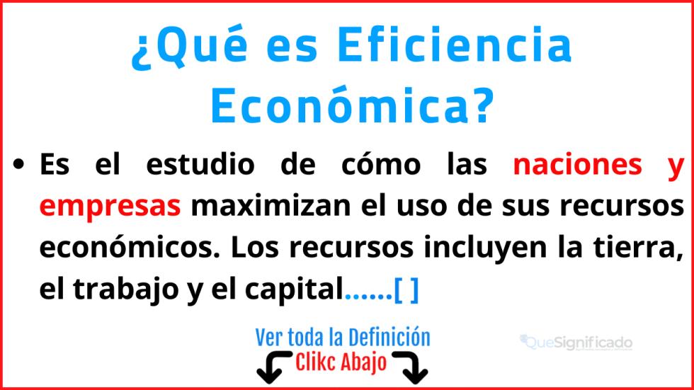 Qué es Eficiencia Económica