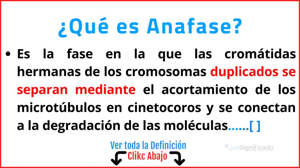 Qué es Anafase