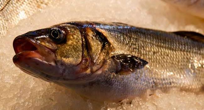 Soñar comprando pescado