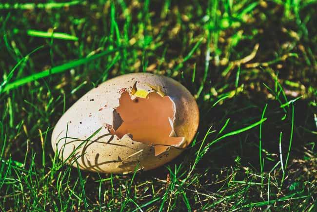 Soñar con huevos rotos en el piso