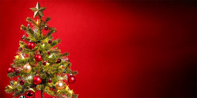Soñar con arboles de navidad