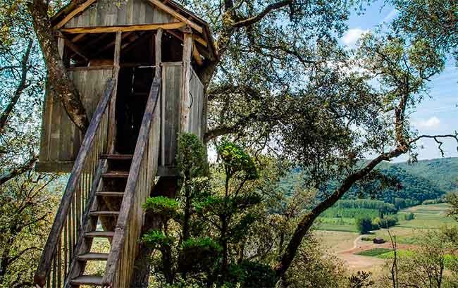 Soñar con escalera de madera sucia