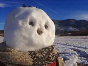 A close-up of the Sierra Nevada snowman