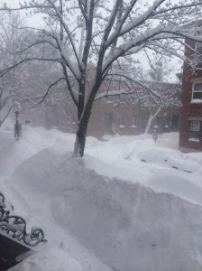 Boston Blizzard Madness