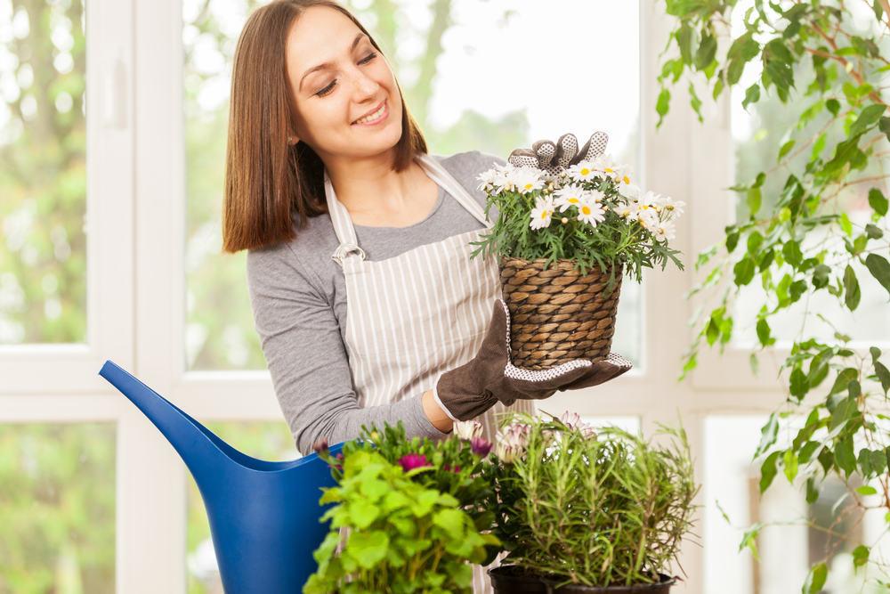 Realizzare un giardino in casa questioni di arredamento - Realizzare un giardino ...
