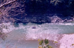 Rafting trip to Rishikesh (8)