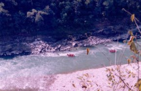 Rafting trip to Rishikesh (17)
