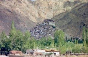 Leh Ladakh tour(19)
