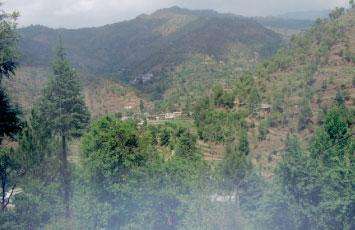 Uttarakhand Family Trip(11)