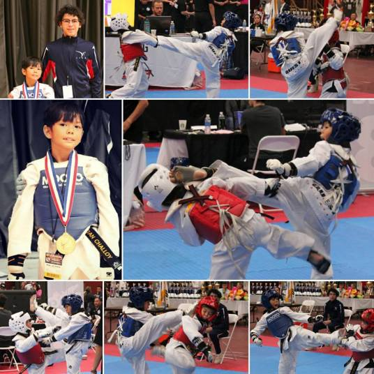 Reian Sparring Gold