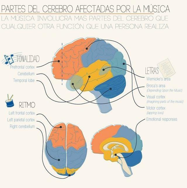 cerebro-y-musica