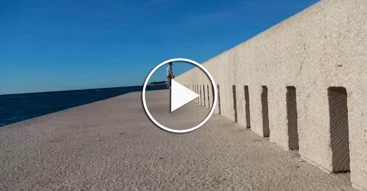 organo-de-mar-video