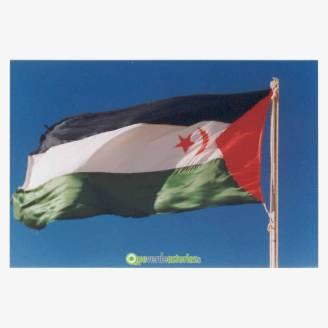 Mesa redonda. El Sahara: derechos fundamentales del pueblo saharaui