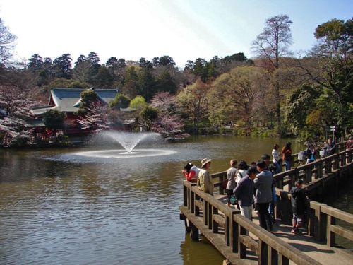 Parque Inokashira, uno de los más visitados de Tokio