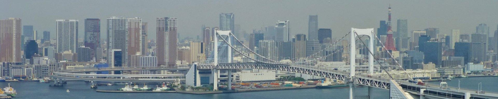 Guía turística con toda la información necesaria para visitar Tokio