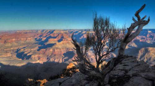 Gran Cañón del Colorado o Grand Canyon National Park