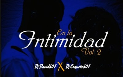 EN LA INTIMIDAD MIX VOL 2  DJ DAVID 507 X DJ COQUETO 507