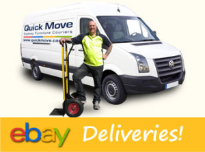 ebay removal team