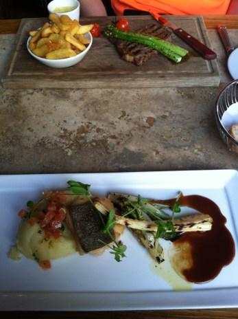 Steak and salmon