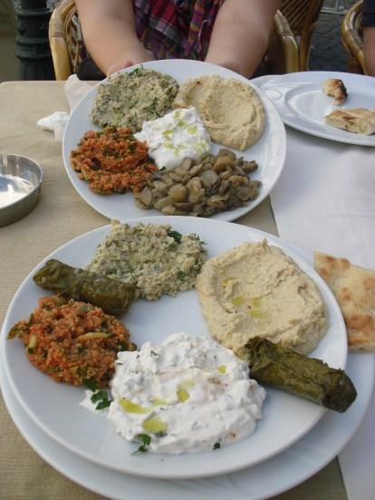 Stuffed grape leaves, yogurt dip, hummus, tebulah, baba ganouj