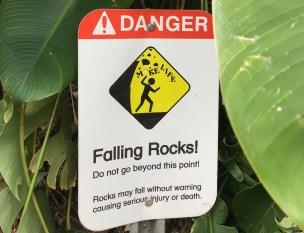Falling Rocks: Make Life!