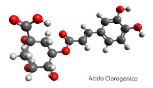 acido-clorogenico-en-los-granos-de-cafe-verde