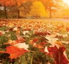 Pueblos de España que debes visitar durante otoño