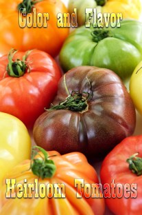 Color and Flavor - Heirloom Tomatoes Varieties