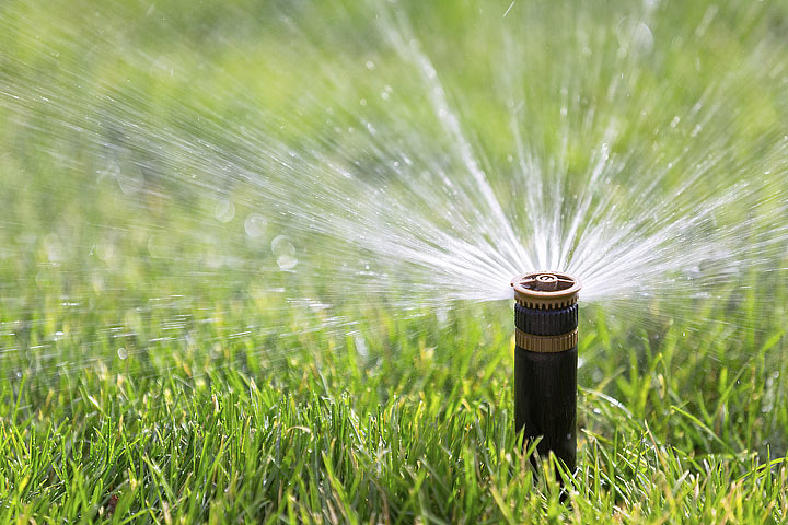 When and How to Water the Lawn - Quiet Corner