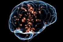 10 Things that Change your Brain