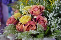 Cut Flowers - Bouquets and Flower Arrangements