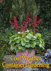 Tips for Cool Weather Container Gardening