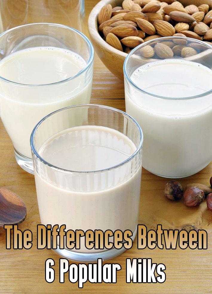 The Differences Between 6 Popular Milks