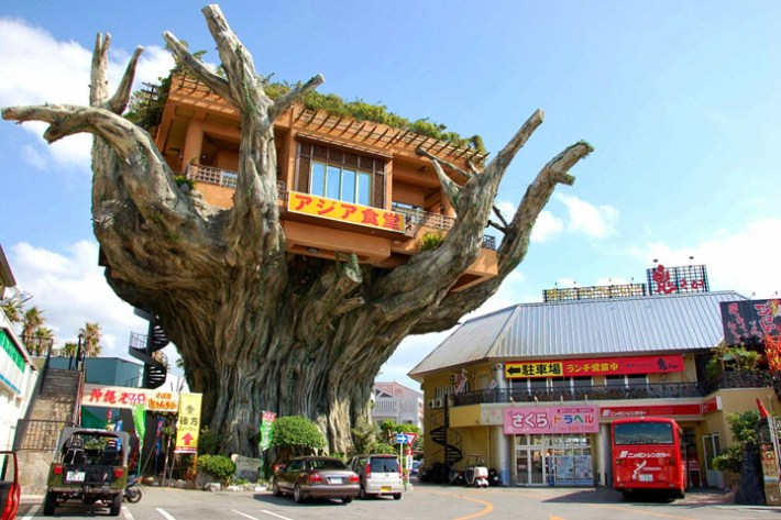 Naha Harbor Diner – Crazy Banyan Treehouse Cafe