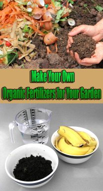 Make Your Own Organic Fertilizers for Your Garden