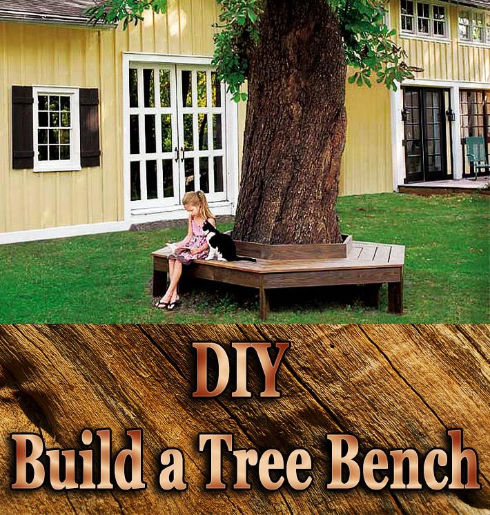 DIY – Build a Tree Bench