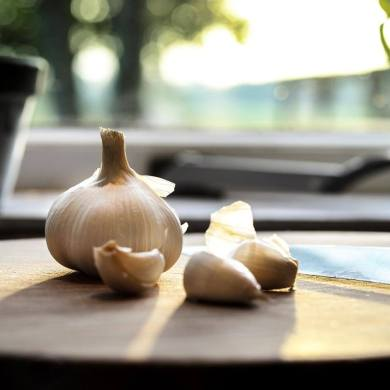 Can Garlic In Ears Help Tinnitus?