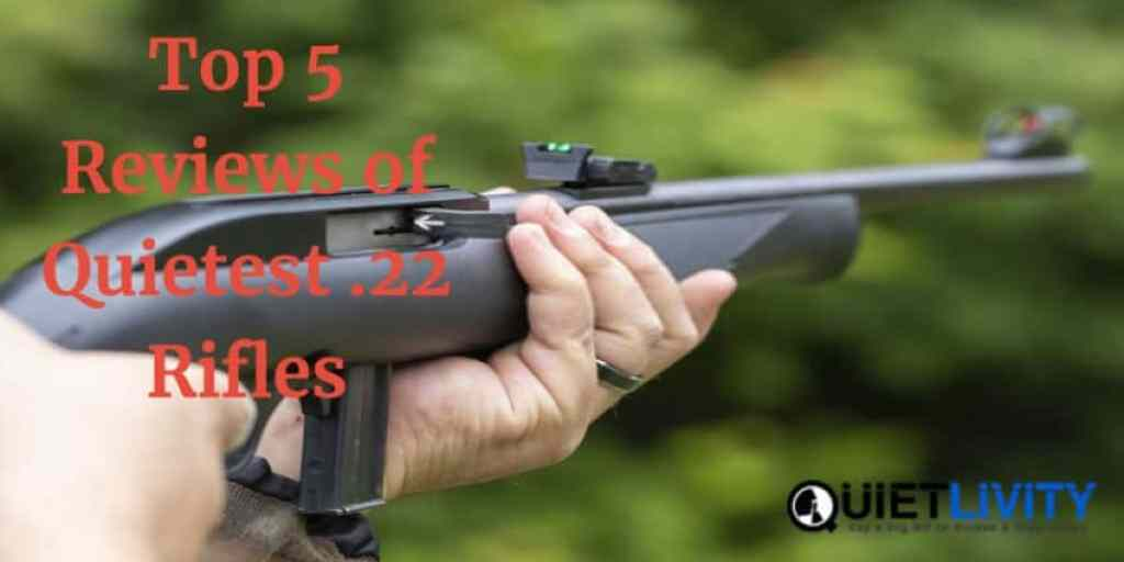 Top 5 Quietest .22 Rifle Reviews
